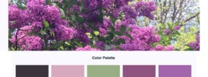 Choosing a Color Palette From a Photo